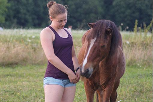 Pferd Nasi