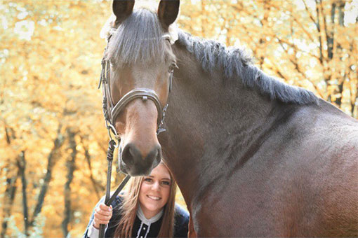 Cassandra Pferd